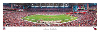 NFL Arizona Cardinals University of Phoenix Stadium Panoramic Photo (UNFRAMED)