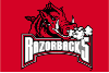 NCAA Arkansas Razorbacks 20x30 Tufted Rug