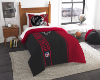 NFL Atlanta Falcons Twin Comforter with Sham