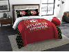 NBA Atlanta Hawks QUEEN Comforter and 2 Shams