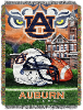 NCAA Auburn Tigers Home Field Advantage 48x60 Tapestry Throw