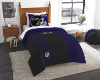 NFL Baltimore Ravens Twin Comforter with Sham
