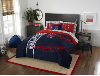 MLB Boston Red Sox FULL Bed In A Bag