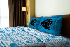 NFL Carolina Panthers Twin Sheet Set
