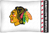 NHL Chicago Blackhawks Micro Fiber Pillow Cases (set of 2)