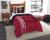 NBA Chicago Bulls Twin Comforter with Sham