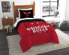 NBA Chicago Bulls Twin Comforter Set