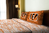 NFL Cincinnati Bengals Full Sheet Set