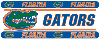 NCAA Florida Gators Wall Paper Border