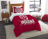 NCAA Indiana Hoosiers Twin Comforter Set