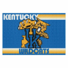 NCAA Kentucky Wildcats 40x60 Tufted Rug