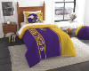 NFL Minnesota Vikings Twin Comforter with Sham