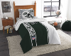 NFL New York Jets TWIN Size Bed In A Bag