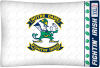 NCAA Notre Dame Fighting Irish Micro Fiber Pillow Cases (set of 2)