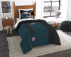 NFL Philadelphia Eagles Twin Comforter with Sham