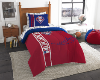 MLB Philadelphia Phillies TWIN Size Bed In A Bag