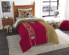 NFL San Francisco 49ers TWIN Size Bed In A Bag