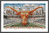 NCAA Texas Longhorns On The Field Mosaic