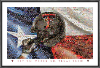 NCAA Texas Tech Red Raiders Flag and Helmet Mosaic
