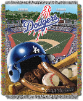 MLB Los Angeles Dodgers Home Field Advantage 48x60 Tapestry Throw