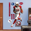 FATHEAD Wall Graphics
