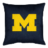 LOCKER ROOM Series Throw Pillows