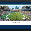 Panoramic Stadium Photos